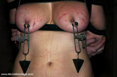 Photo number 5 from Princess Donna Live, Part 2 shot for Device Bondage on Kink.com. Featuring Princess Donna Dolore and Sarah Jane Ceylon in hardcore BDSM & Fetish porn.
