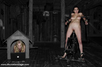 Photo number 7 from Princess Donna Live, Part 2 shot for Device Bondage on Kink.com. Featuring Princess Donna Dolore and Sarah Jane Ceylon in hardcore BDSM & Fetish porn.