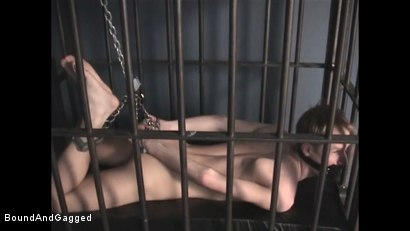 Photo number 4 from Catch a Thief: Slave Training pt. 1 shot for Bound And Gagged on Kink.com. Featuring Tim Taylor and Oskar in hardcore BDSM & Fetish porn.