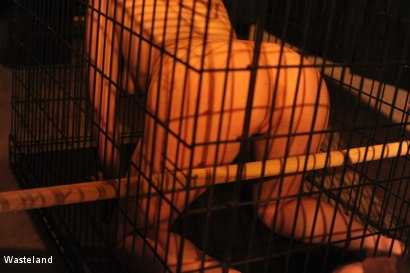 Photo number 3 from Kat in a Cage shot for Wasteland on Kink.com. Featuring Leila Hazlett and Shadrack Stargazer in hardcore BDSM & Fetish porn.