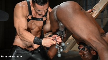 Photo number 15 from Fresh Muscle: Leather Clad Arad Winwin Punishes Newcomer Parker Payne shot for Bound Gods on Kink.com. Featuring Arad Winwin and Parker Payne in hardcore BDSM & Fetish porn.