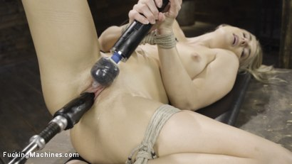 Fresh Meat - Nikki Peach in Bondage