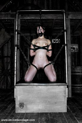 Photo number 2 from Concentration shot for Device Bondage on Kink.com. Featuring Amber Rayne in hardcore BDSM & Fetish porn.