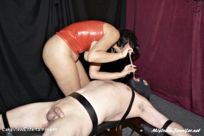 Photo number 26 from Hot For Haley shot for Lakeview Entertainment on Kink.com. Featuring Slave Spartacus and Mistress Haley in hardcore BDSM & Fetish porn.