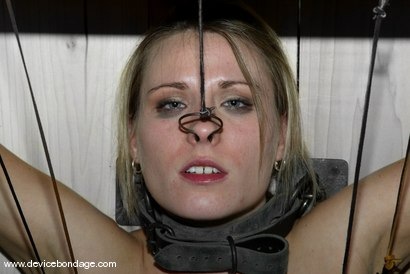 Photo number 8 from The Cock Craver / Figurehead shot for Device Bondage on Kink.com. Featuring Harmony in hardcore BDSM & Fetish porn.