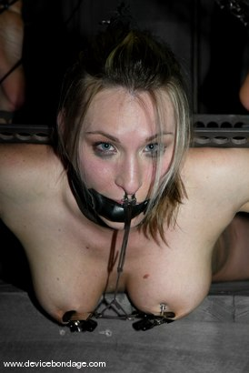 Photo number 6 from The Cock Craver / Figurehead shot for Device Bondage on Kink.com. Featuring Harmony in hardcore BDSM & Fetish porn.