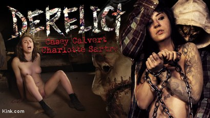 Derelict: The Psychosexual Abduction of Casey and Charlotte