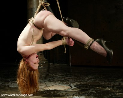 Photo number 3 from Madison Young   Hotter Than Ever! shot for Water Bondage on Kink.com. Featuring Madison Young in hardcore BDSM & Fetish porn.