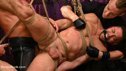 The Slave, His Master, and Their Gimp