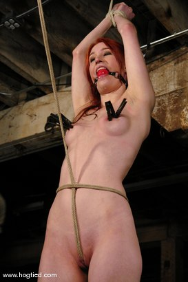Photo number 2 from Calico shot for Hogtied on Kink.com. Featuring Calico in hardcore BDSM & Fetish porn.