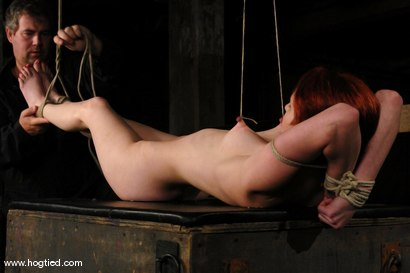 Photo number 4 from Calico shot for Hogtied on Kink.com. Featuring Calico in hardcore BDSM & Fetish porn.