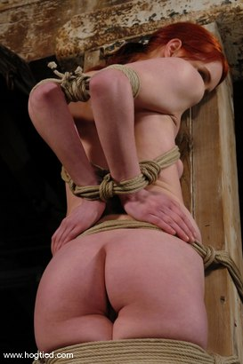 Photo number 7 from Calico shot for Hogtied on Kink.com. Featuring Calico in hardcore BDSM & Fetish porn.
