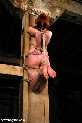 Photo number 8 from Calico shot for Hogtied on Kink.com. Featuring Calico in hardcore BDSM & Fetish porn.