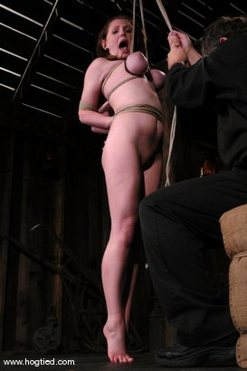 Photo number 10 from Sara Scott shot for Hogtied on Kink.com. Featuring Sara Scott in hardcore BDSM & Fetish porn.