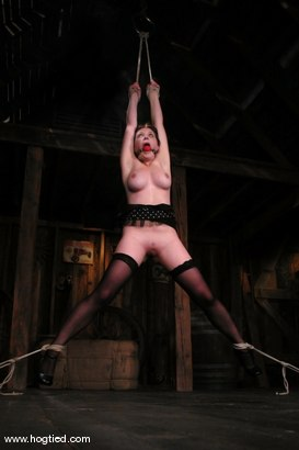 Photo number 2 from Sara Scott shot for Hogtied on Kink.com. Featuring Sara Scott in hardcore BDSM & Fetish porn.