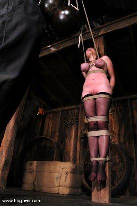 Photo number 5 from Sara Scott shot for Hogtied on Kink.com. Featuring Sara Scott in hardcore BDSM & Fetish porn.
