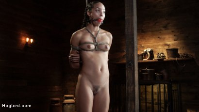 Photo number 2 from Alexis Tae's First Time Being tormented in Grueling Bondage shot for Hogtied on Kink.com. Featuring Alexis Tae in hardcore BDSM & Fetish porn.