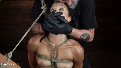Photo number 24 from Alexis Tae's First Time Being tormented in Grueling Bondage shot for Hogtied on Kink.com. Featuring Alexis Tae in hardcore BDSM & Fetish porn.