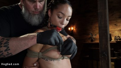 Photo number 4 from Alexis Tae's First Time Being tormented in Grueling Bondage shot for Hogtied on Kink.com. Featuring Alexis Tae in hardcore BDSM & Fetish porn.