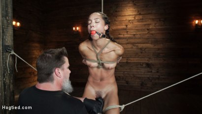 Photo number 7 from Alexis Tae's First Time Being tormented in Grueling Bondage shot for Hogtied on Kink.com. Featuring Alexis Tae in hardcore BDSM & Fetish porn.