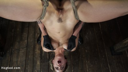 Photo number 14 from Alina Lopez: Tormented in Extreme Bondage and Made to Cum shot for Hogtied on Kink.com. Featuring Alina Lopez in hardcore BDSM & Fetish porn.