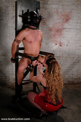 Photo number 4 from Billy and Danielle Foxxx shot for TS Seduction on Kink.com. Featuring Danielle Foxx and Billy in hardcore BDSM & Fetish porn.