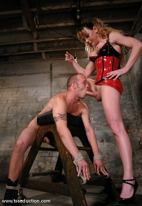 Photo number 9 from Billy and Danielle Foxxx shot for TS Seduction on Kink.com. Featuring Danielle Foxx and Billy in hardcore BDSM & Fetish porn.