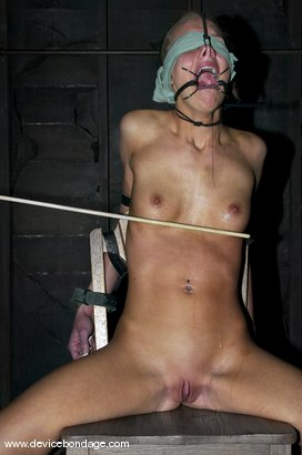 Photo number 9 from The Taming shot for Device Bondage on Kink.com. Featuring Leah Wilde in hardcore BDSM & Fetish porn.
