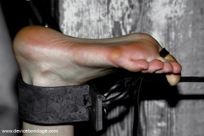 Photo number 5 from Dainty Feet shot for Device Bondage on Kink.com. Featuring Calico in hardcore BDSM & Fetish porn.