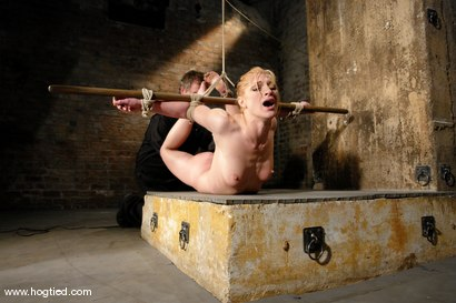 Photo number 8 from Tawni Ryden shot for Hogtied on Kink.com. Featuring Tawni Ryden in hardcore BDSM & Fetish porn.