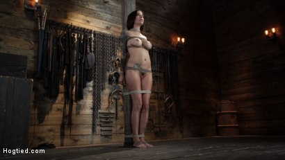 Photo number 1 from Gia DiMarco is Back! Grueling Bondage And Mind-Blowing Orgasms shot for Hogtied on Kink.com. Featuring Gia DiMarco in hardcore BDSM & Fetish porn.
