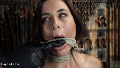 Photo number 10 from Gia DiMarco is Back! Grueling Bondage And Mind-Blowing Orgasms shot for Hogtied on Kink.com. Featuring Gia DiMarco in hardcore BDSM & Fetish porn.