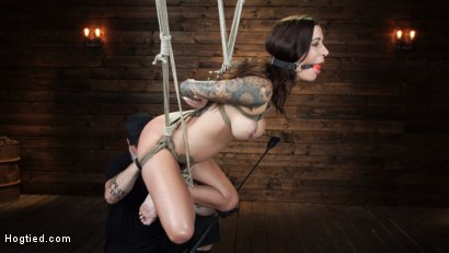 Photo number 16 from Gia DiMarco is Back! Grueling Bondage And Mind-Blowing Orgasms shot for Hogtied on Kink.com. Featuring Gia DiMarco in hardcore BDSM & Fetish porn.