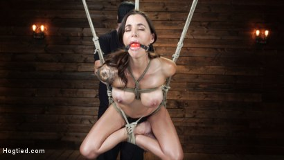 Photo number 17 from Gia DiMarco is Back! Grueling Bondage And Mind-Blowing Orgasms shot for Hogtied on Kink.com. Featuring Gia DiMarco in hardcore BDSM & Fetish porn.
