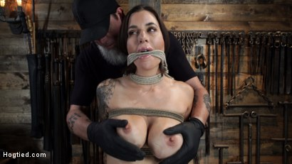 Photo number 2 from Gia DiMarco is Back! Grueling Bondage And Mind-Blowing Orgasms shot for Hogtied on Kink.com. Featuring Gia DiMarco in hardcore BDSM & Fetish porn.