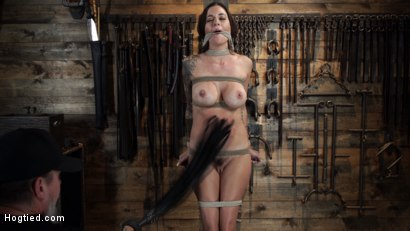 Photo number 3 from Gia DiMarco is Back! Grueling Bondage And Mind-Blowing Orgasms shot for Hogtied on Kink.com. Featuring Gia DiMarco in hardcore BDSM & Fetish porn.