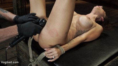 Photo number 31 from Gia DiMarco is Back! Grueling Bondage And Mind-Blowing Orgasms shot for Hogtied on Kink.com. Featuring Gia DiMarco in hardcore BDSM & Fetish porn.