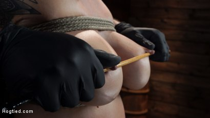 Photo number 4 from Gia DiMarco is Back! Grueling Bondage And Mind-Blowing Orgasms shot for Hogtied on Kink.com. Featuring Gia DiMarco in hardcore BDSM & Fetish porn.