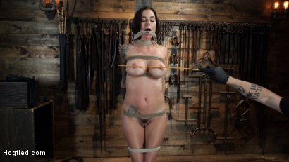Photo number 5 from Gia DiMarco is Back! Grueling Bondage And Mind-Blowing Orgasms shot for Hogtied on Kink.com. Featuring Gia DiMarco in hardcore BDSM & Fetish porn.