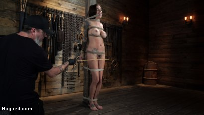 Photo number 6 from Gia DiMarco is Back! Grueling Bondage And Mind-Blowing Orgasms shot for Hogtied on Kink.com. Featuring Gia DiMarco in hardcore BDSM & Fetish porn.