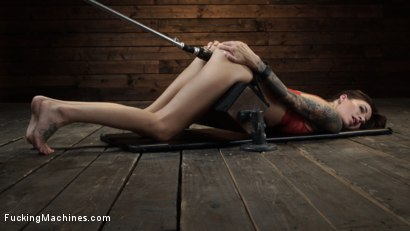Photo number 19 from Gia DiMarco: Queen Bee is Tied Up and Machine Fucked shot for Fucking Machines on Kink.com. Featuring Gia DiMarco in hardcore BDSM & Fetish porn.