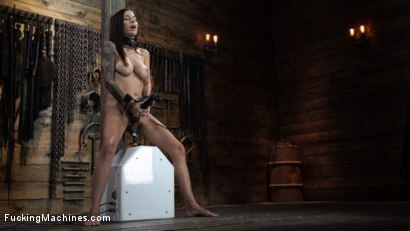 Photo number 21 from Gia DiMarco: Queen Bee is Tied Up and Machine Fucked shot for Fucking Machines on Kink.com. Featuring Gia DiMarco in hardcore BDSM & Fetish porn.