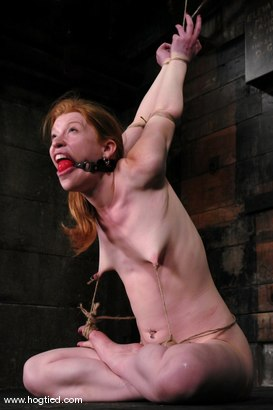 Photo number 14 from Madison Young <br> in one of Hogtied hardest updates. shot for Hogtied on Kink.com. Featuring Madison Young in hardcore BDSM & Fetish porn.