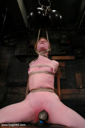Photo number 5 from Madison Young <br> in one of Hogtied hardest updates. shot for Hogtied on Kink.com. Featuring Madison Young in hardcore BDSM & Fetish porn.