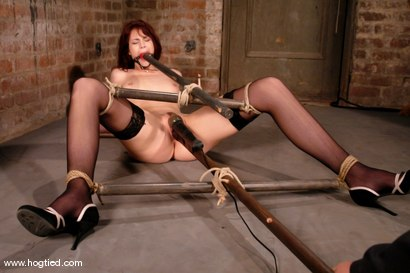 "Photo number 4 from Hogtied welcomes back the beautiful Faith Leon.  Now an adult ""A"" lister, Faith returns to her roots shot for Hogtied on Kink.com. Featuring Faith Leon in hardcore BDSM & Fetish porn."