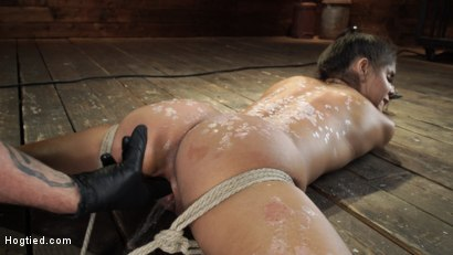 Photo number 21 from Katya Rodriguez: Hogtied Newcomer Bound and Tormented in Bondage shot for Hogtied on Kink.com. Featuring Katya Rodriguez in hardcore BDSM & Fetish porn.