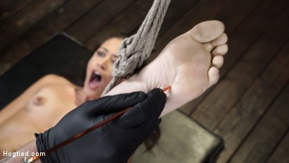 Photo number 19 from Avi Love: Young, Sexy Rope Slut Tormented and Made to Cum in Bondage shot for Hogtied on Kink.com. Featuring Avi Love in hardcore BDSM & Fetish porn.
