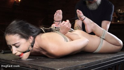 Photo number 9 from Avi Love: Young, Sexy Rope Slut Tormented and Made to Cum in Bondage shot for Hogtied on Kink.com. Featuring Avi Love in hardcore BDSM & Fetish porn.