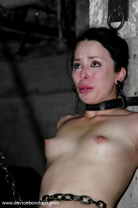 Photo number 2 from Alexa Von Tess Live, Part 2 shot for Device Bondage on Kink.com. Featuring Alexa Von Tess and Delilah Strong in hardcore BDSM & Fetish porn.
