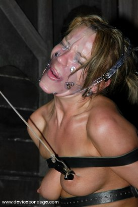 Photo number 12 from Bucking Bronco shot for Device Bondage on Kink.com. Featuring Holly Wellin in hardcore BDSM & Fetish porn.